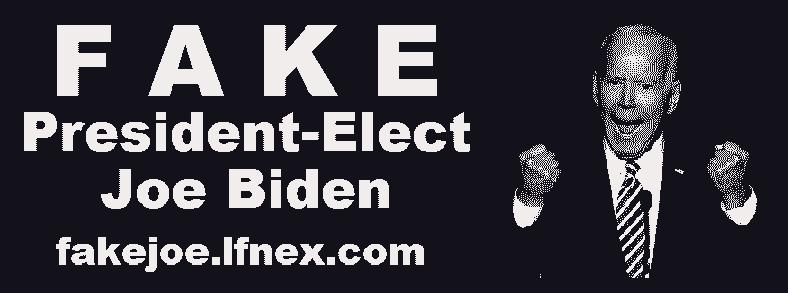FAKE President-Elect Joe Biden